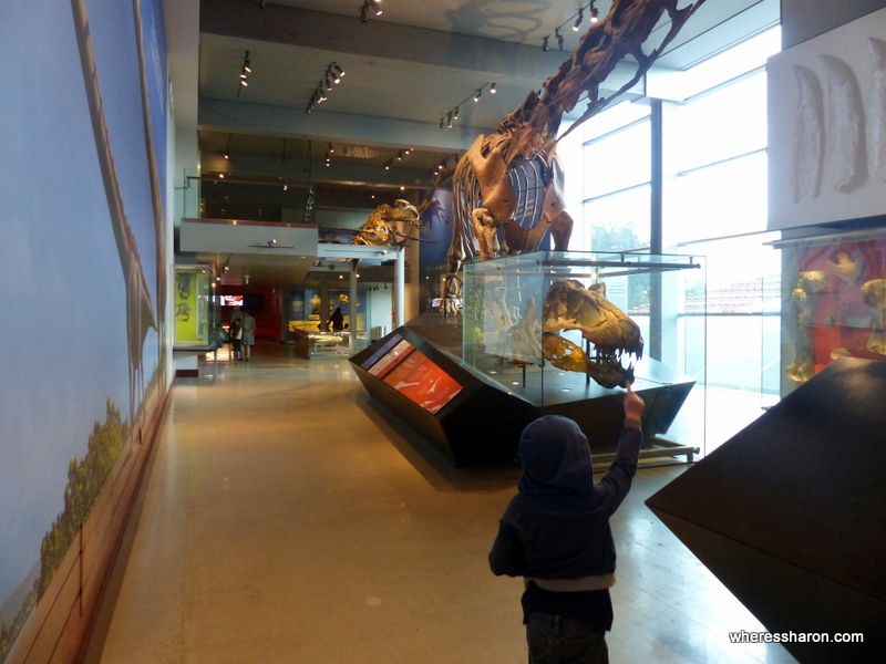 what to do in los angeles with family at Natural History Museum Los Angeles