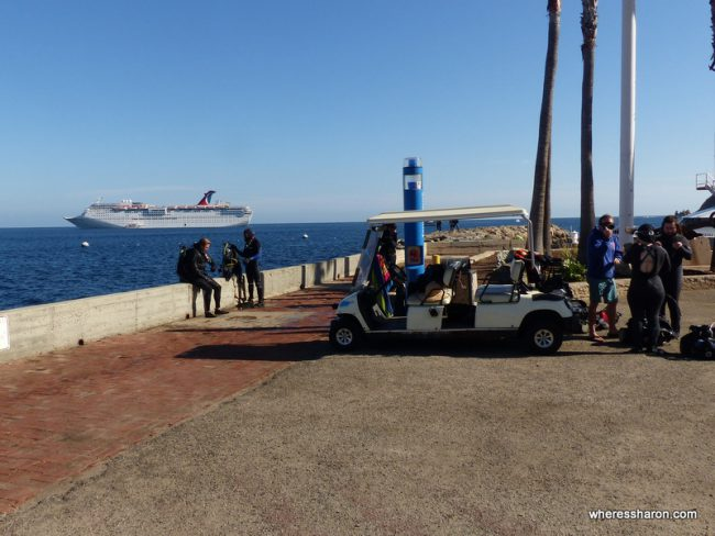 what to do in catalina island avalon