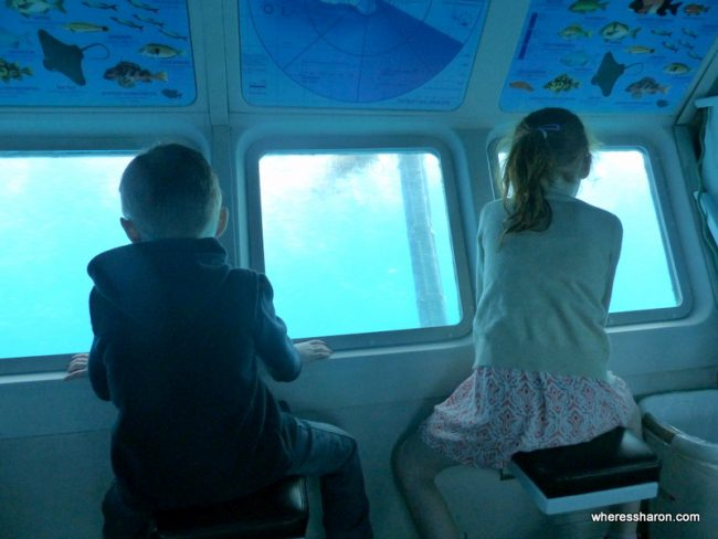 what to do on catalina island with kids