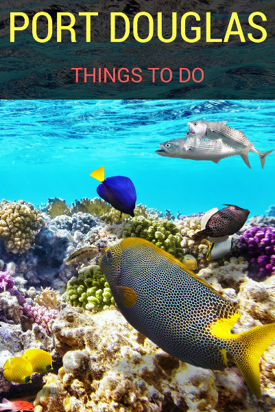 top things to do in PORT DOUGLAS s