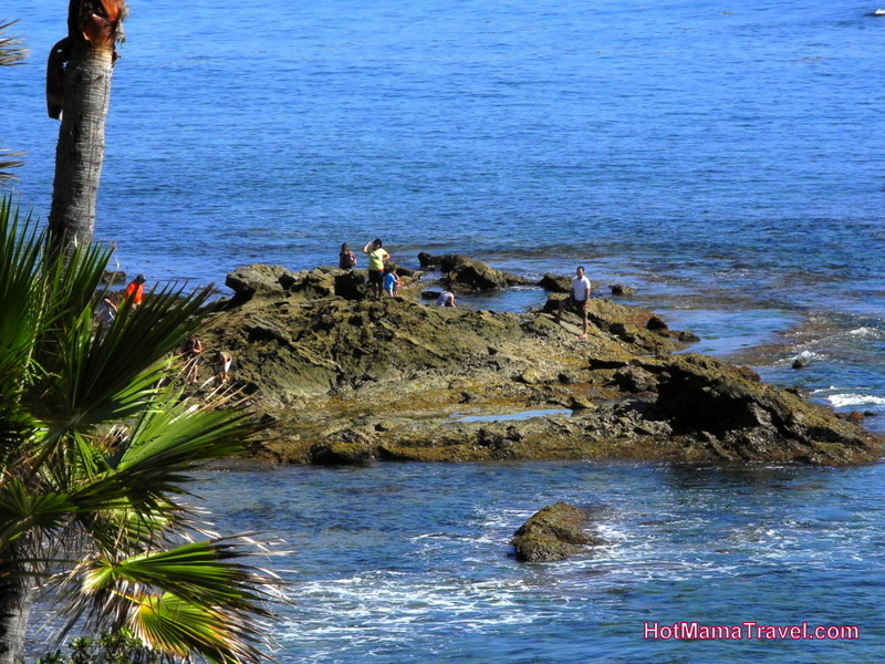 Tide Pools in Laguna and Corona Del Mar