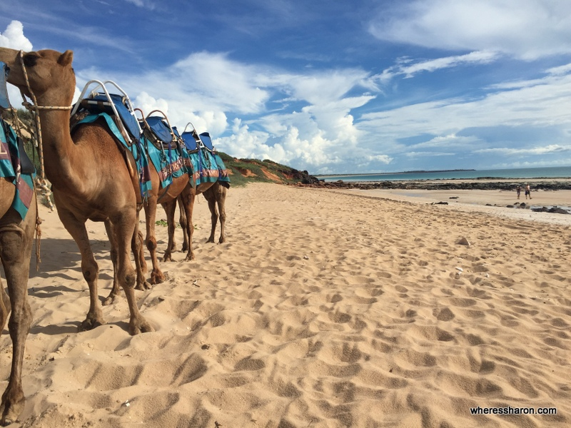 Top 13 things to do in Broome WA