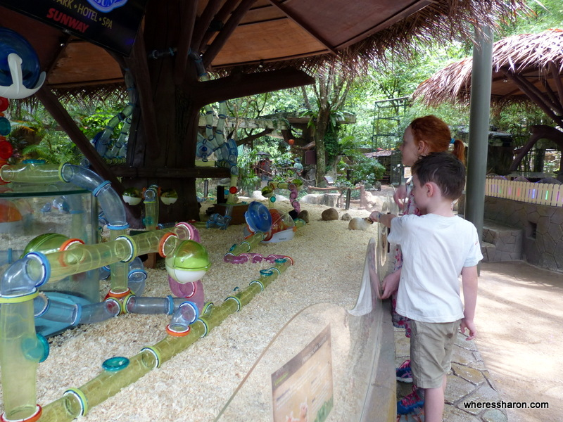 Fun In The Sunway Lost World Of Tambun Review Family Travel Blog