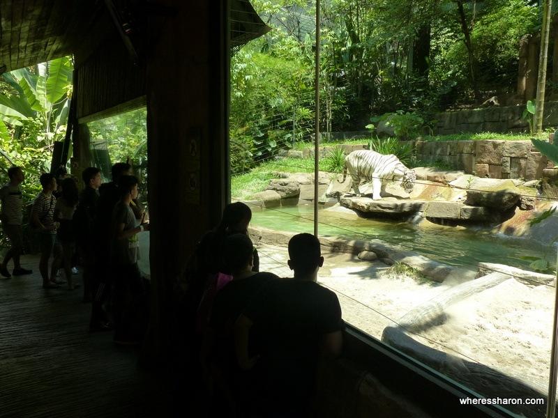 Wildlife Park at sunway lagoon