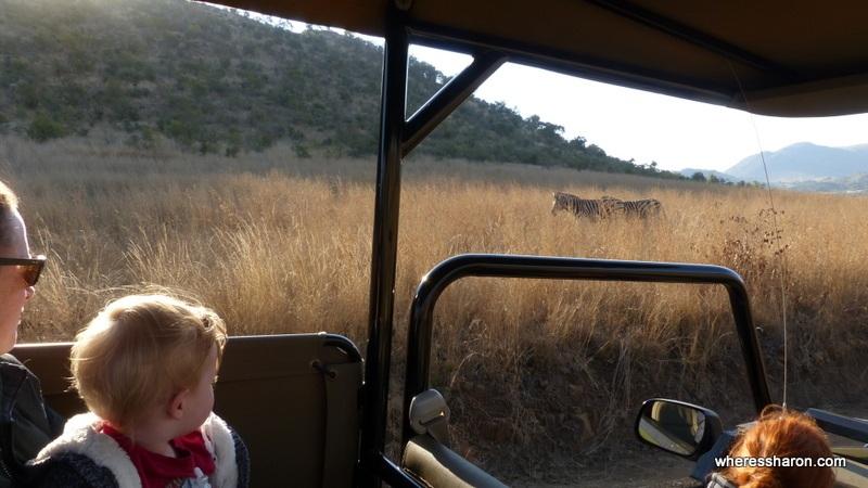Pilanesberg National Park safari with kids