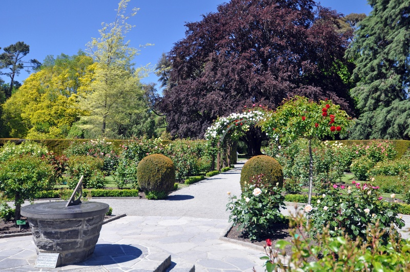 attractions in christchurch at Lady Norwood Rose Gardens