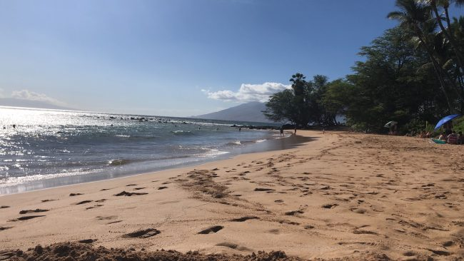 """""""Our"""" beach. The best spot is the far end by the trees."""